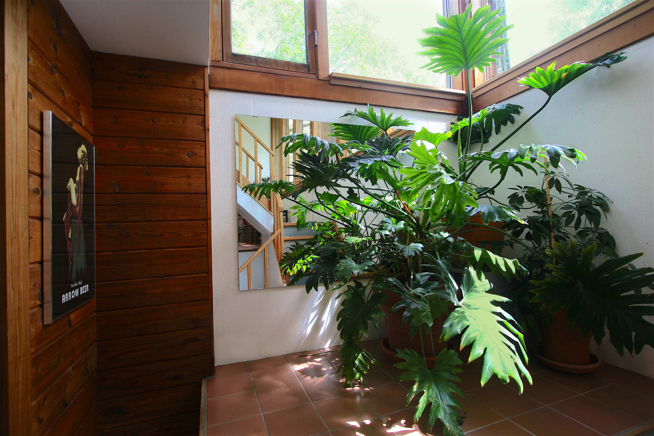 The  greenspace  is exactly what the name implies... a space to nurture and grow your choice of flora on a year-round basis. (The cedar-panelled wall on the left is the wood-chute, holding a week's worth of winter firewood which is loaded through a locking door on the east side of the house).