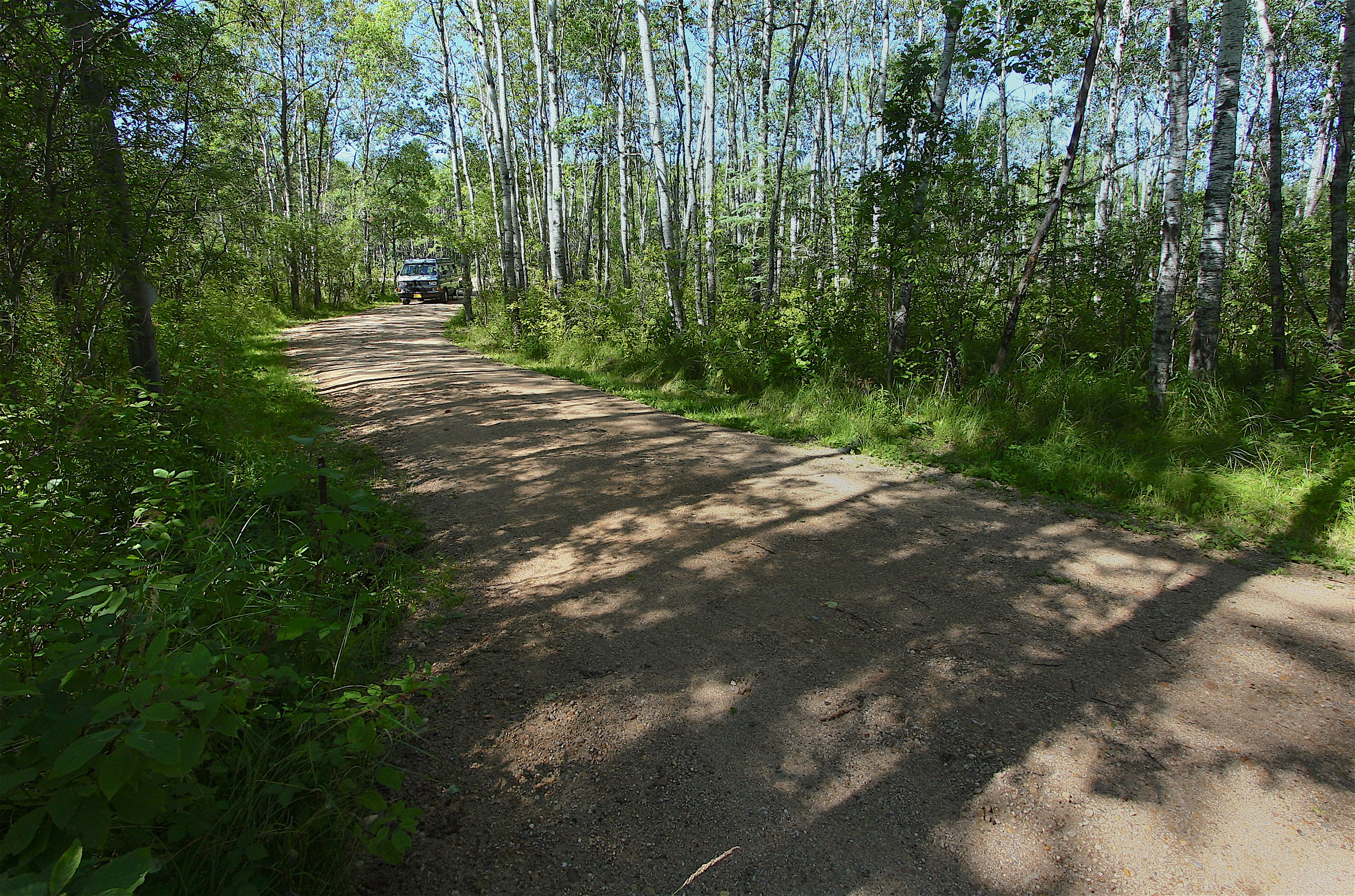 The driveway (approximately 50 meters in length) as seen from the small  roundabout...