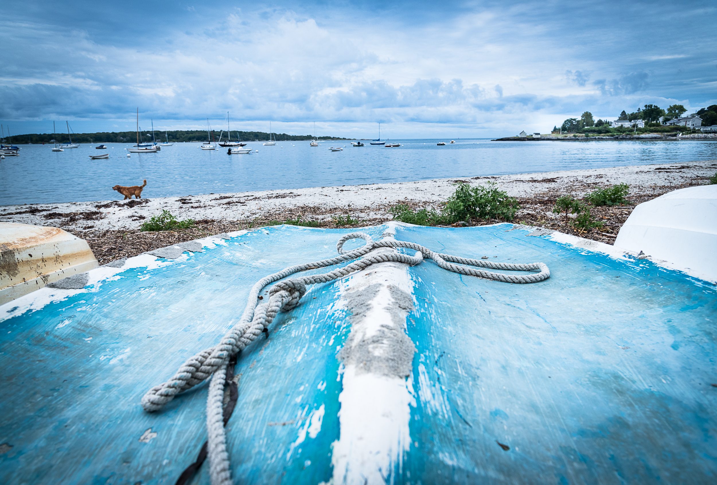The Boats of Willard Beach, South Portland, Maine