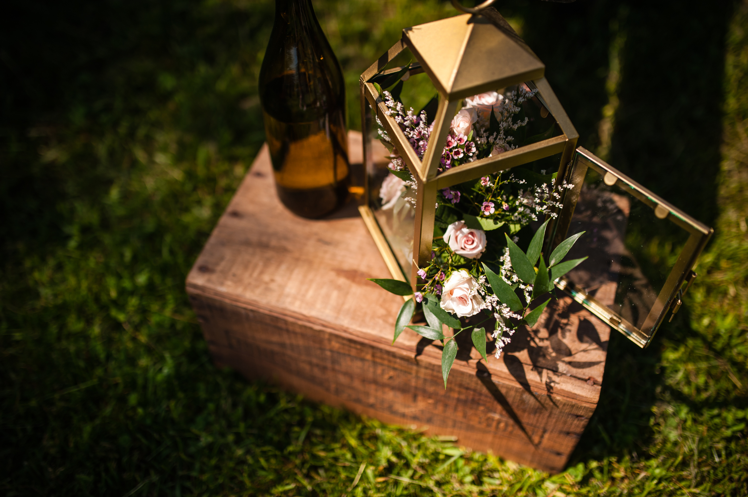 PhotographybyAmandaMorgan-blog-40.jpg