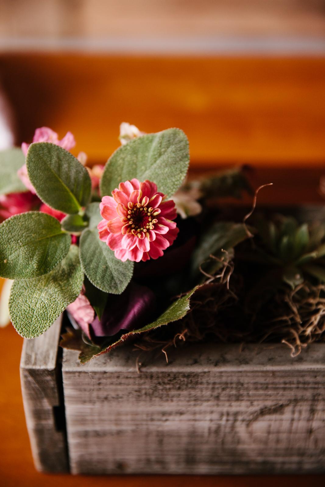Glimmerstone-Mansion-Vermont-Wedding-Photography-Amanda-Morgan-102.jpg