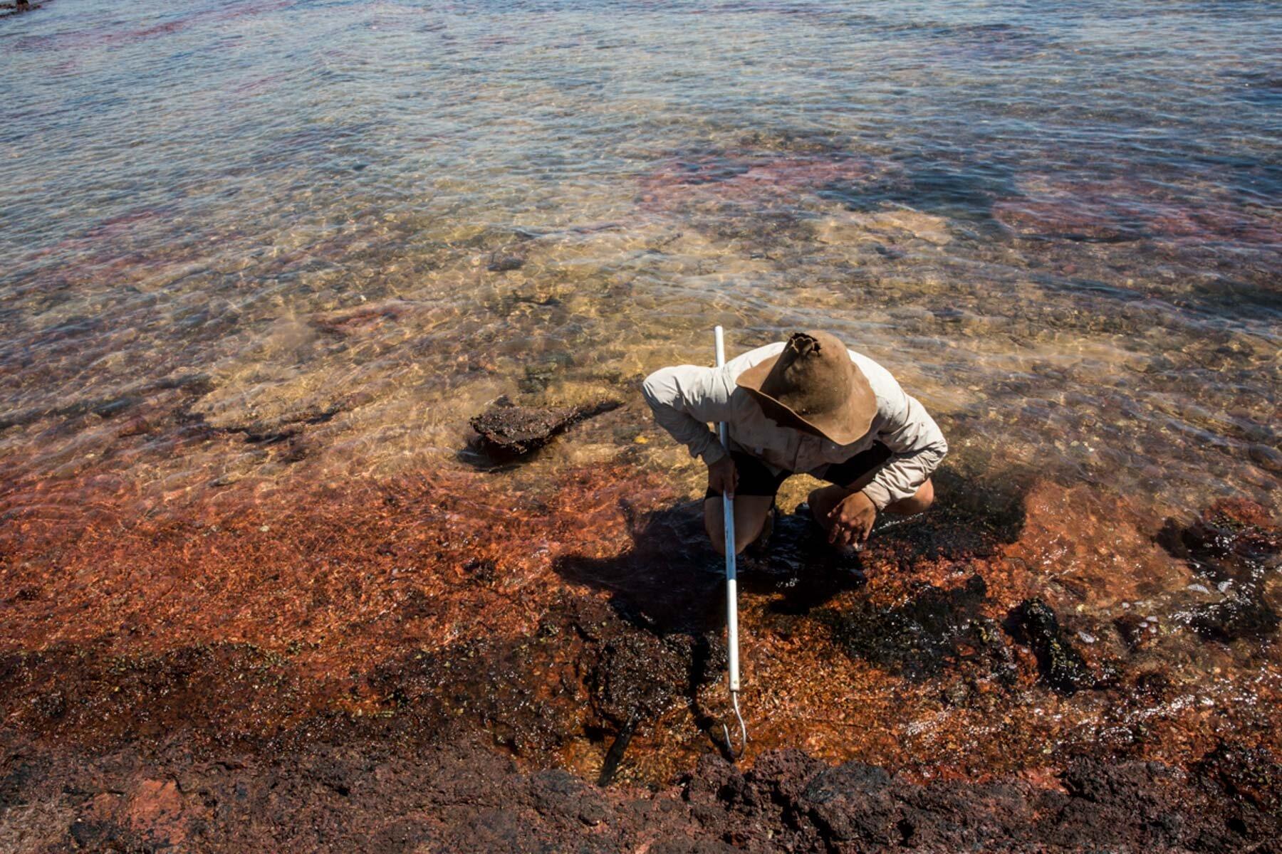 Darwin Based Photographer Helspix Helen Orr-275.jpg