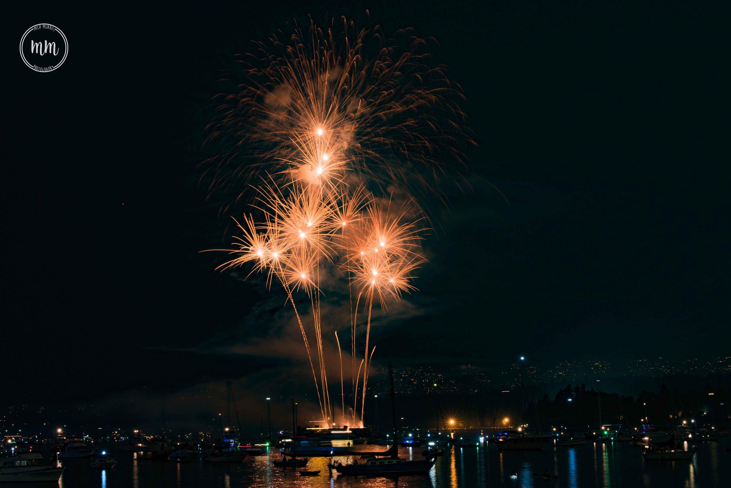 ukfireworks-MicaMijaresPhotography-11.jpg