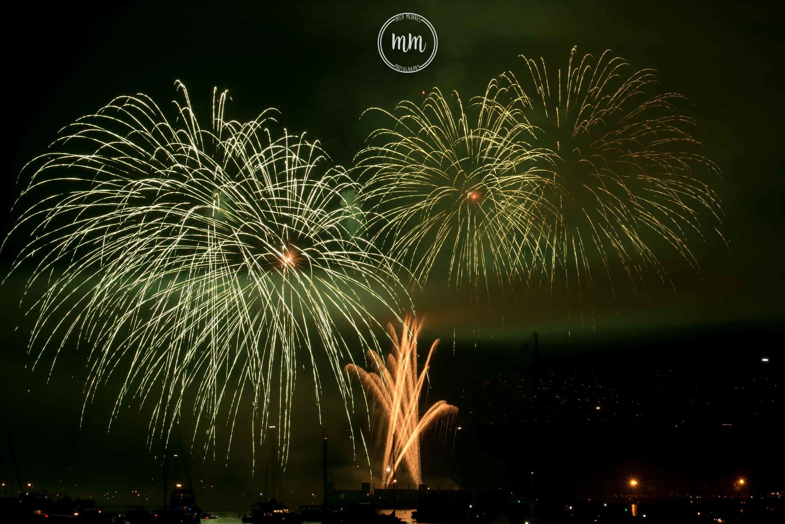 ukfireworks-MicaMijaresPhotography-21.jpg