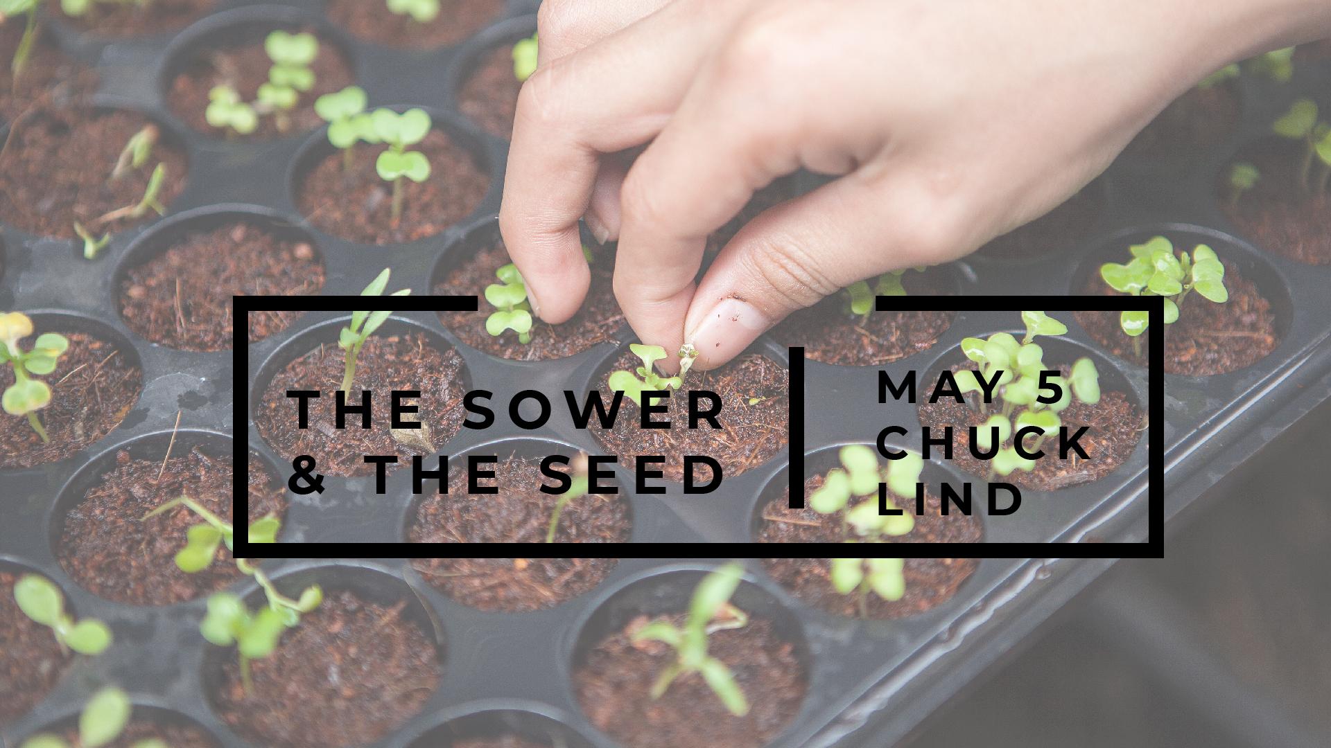 Sower & Seed.jpg