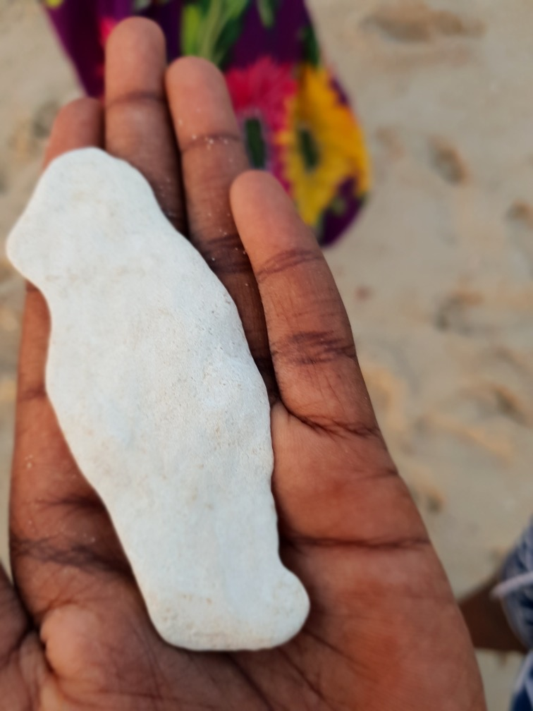 Fragment  (Photo Credit: Mahra Villis, Nov 2018, Arnhem Land, NT)