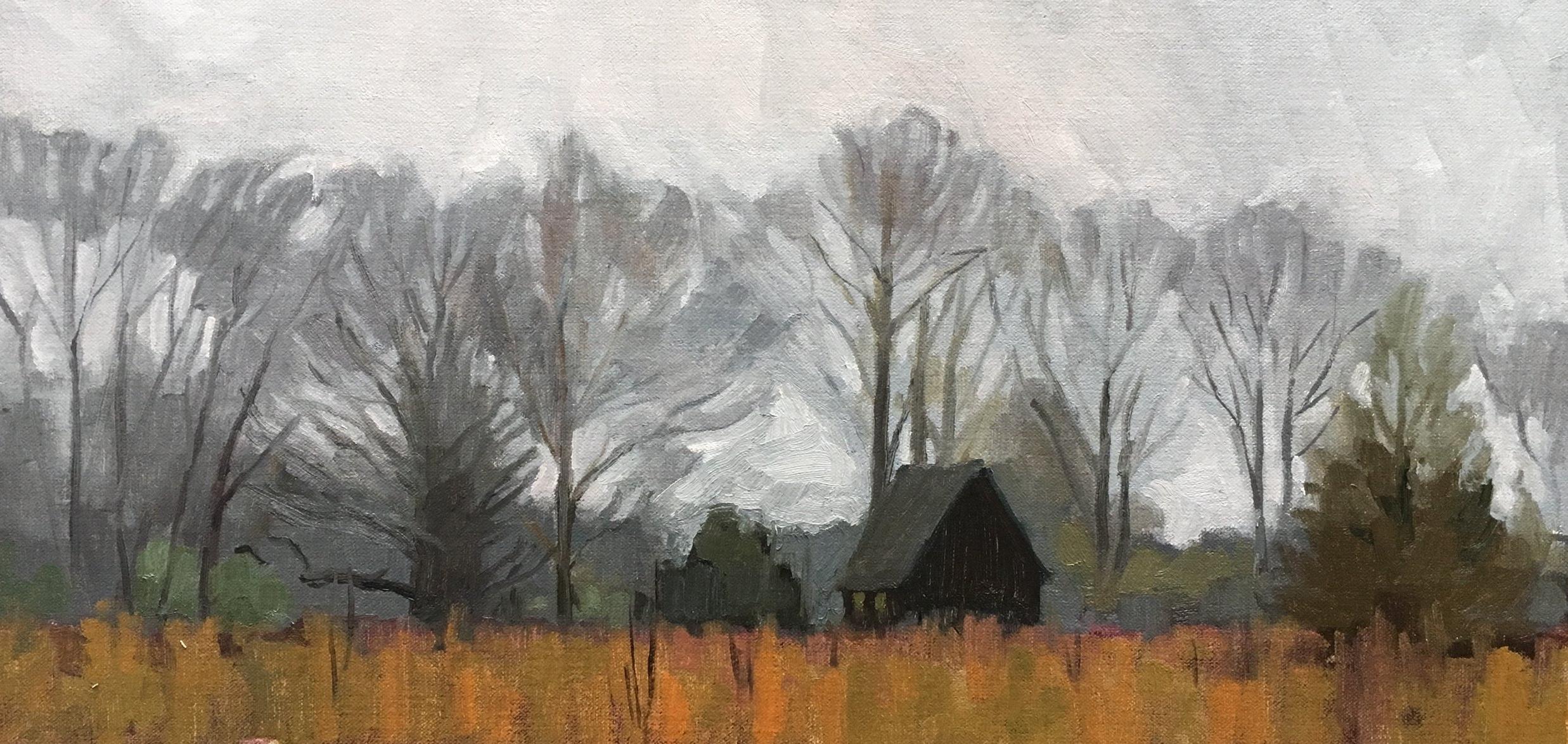 Quiet Field