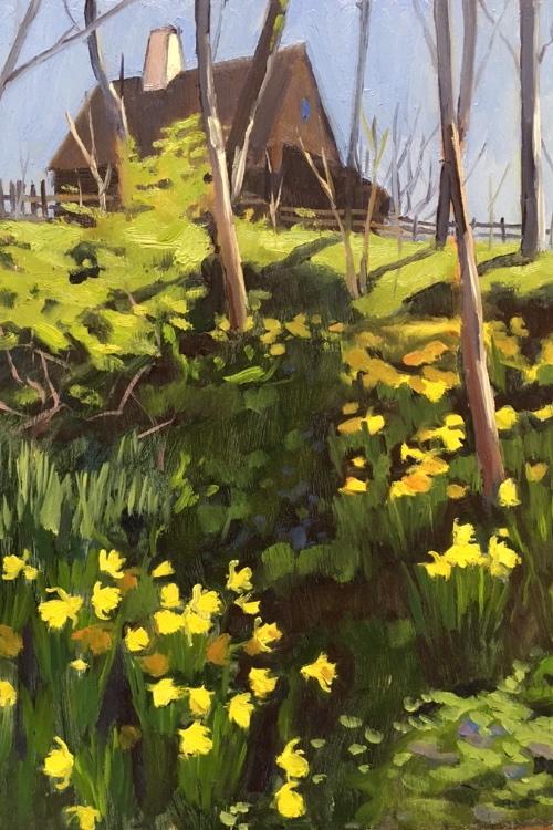 Daffodil Gulch