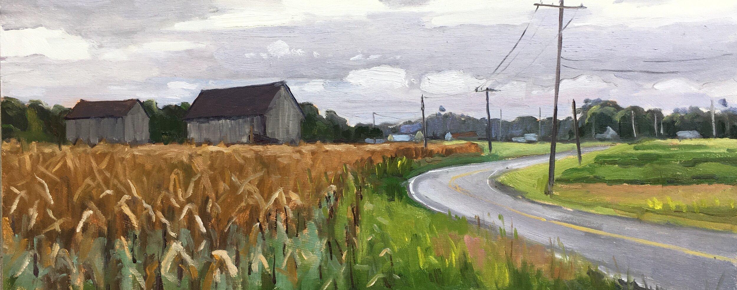 Parran Road - Late Summer