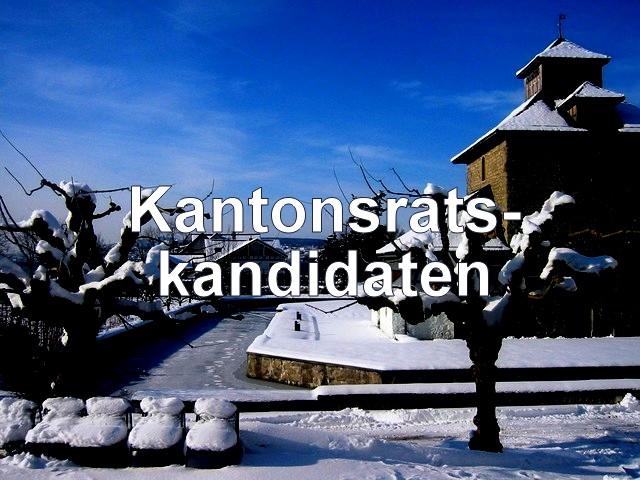 pfäffikon_winter.JPG