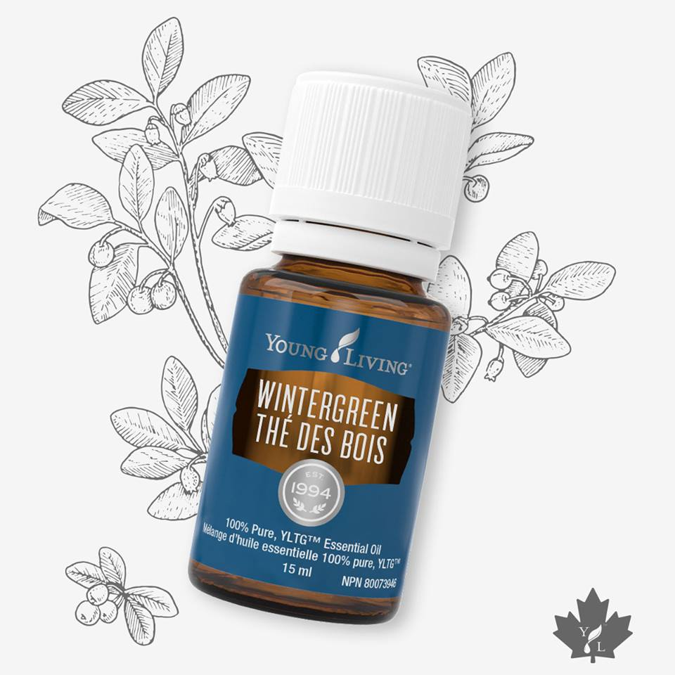 Wintergreen - Wintergreen is an uplifting essential oil with a refreshing minty aroma. When diffused, this multi-tasking oil encourages a positive 'let's do this' attitude with its energizing scent. It's the perfect way to start the day, providing a welcome boost before an early morning run or important presentation.While Wintergreen's aroma is refreshing, it has warming qualities that make it an ideal choice to help relieve backache, as well as joint and muscle pain associated with sprains, strains, or rheumatoid arthritis. An ideal companion for those who enjoy an active lifestyle, Wintergreen is a wonderful addition to your gym bag to use during or following a workout. It's a wonderful oil to keep handy in your desk drawer as an instant pick-me-up to beat that 3 o'clock slump. With an intoxicating fragrance, Wintergreen offers renewed vitality to face whatever the day may bring.Wintergreen can be used topically:To help relieve joint or muscle pain associated with sprains, strains and arthritisTo relieve the physical stresses of the day, including backache or lumbago