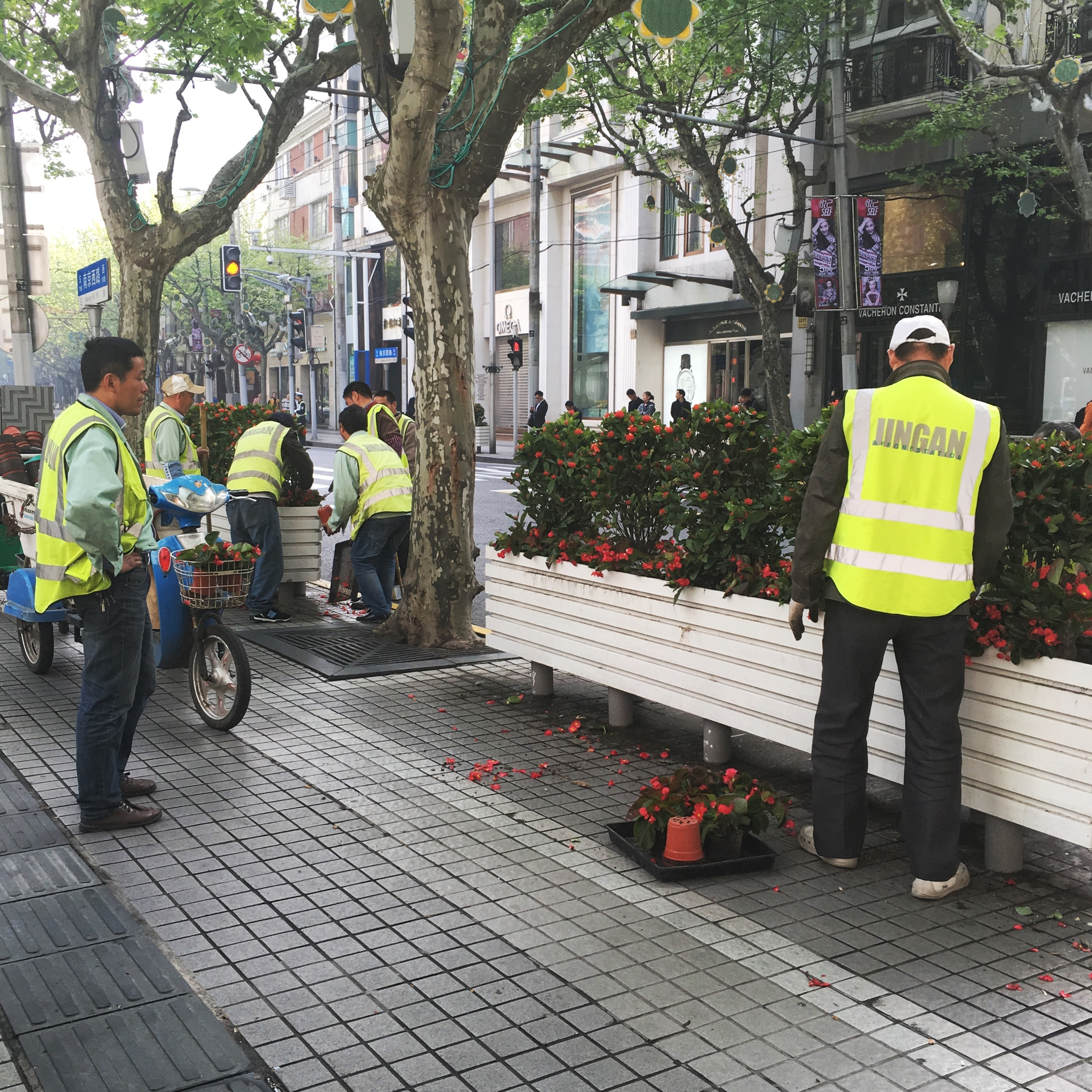 City Workers in Jing'An District