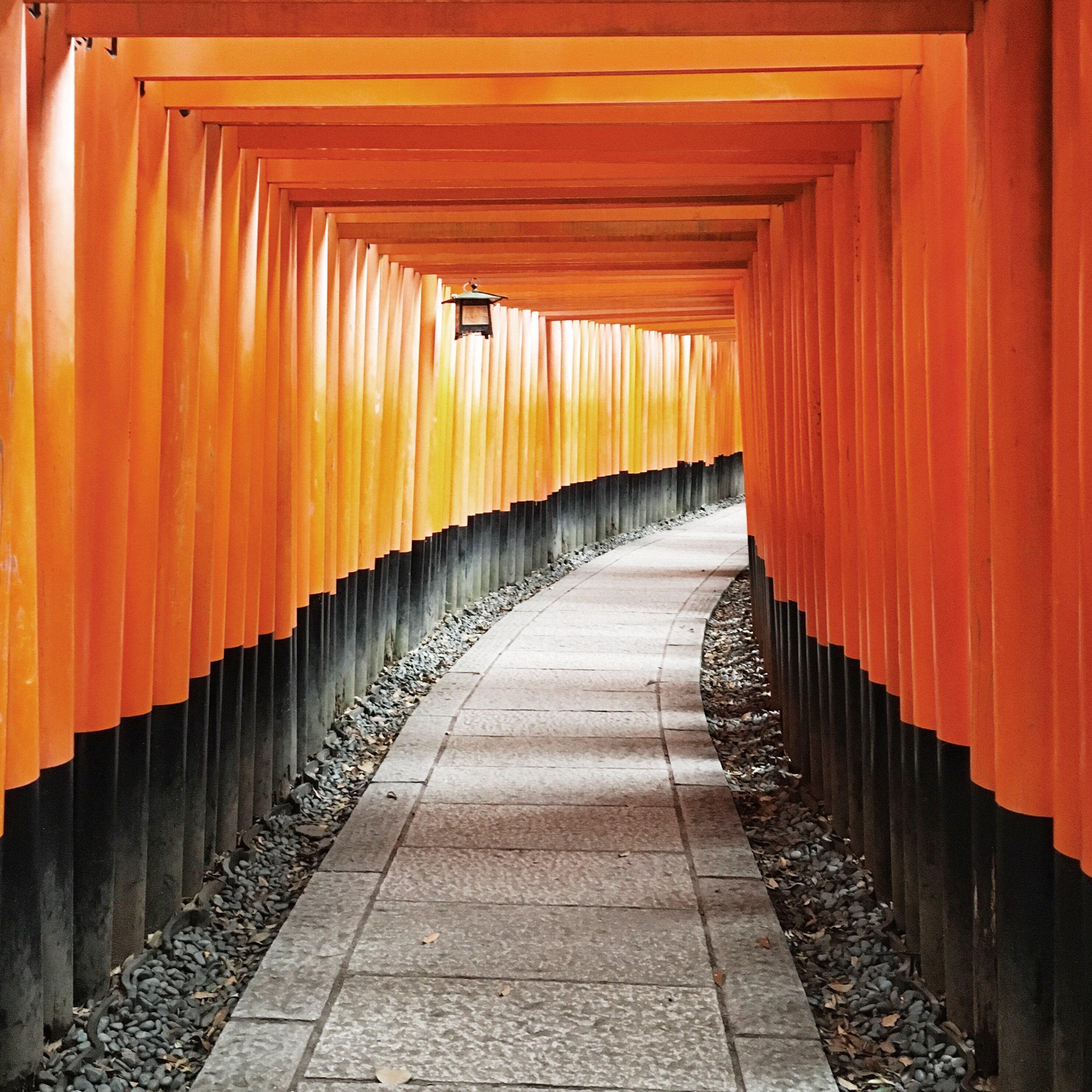 Inari Temple Gates