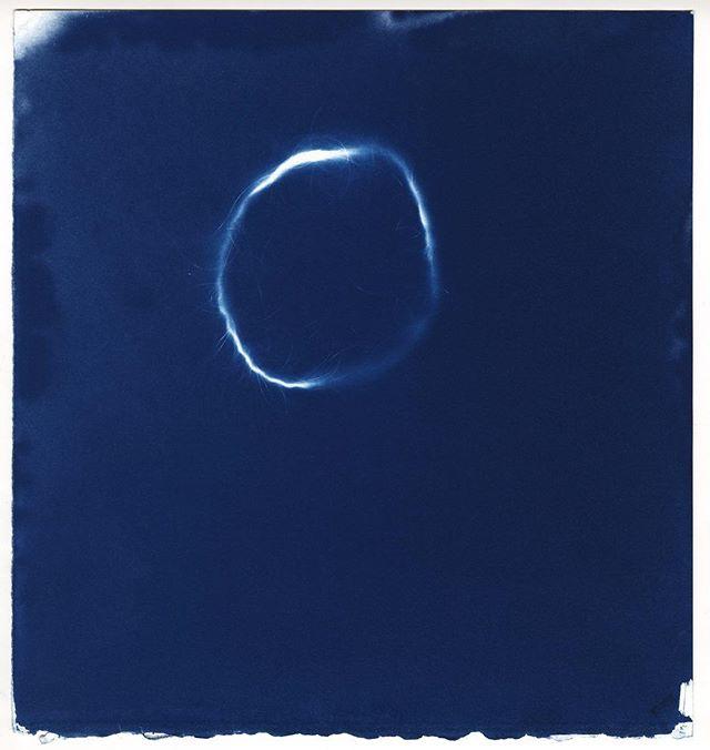 More from the series I did last fall.  #showyourbones #ritphoto #processart #oneofakind #prussianblue #cyanotype #altprocess #alternativeprocess #historicalprocess #annaatkinsvibes #feministart #womenartists #potassiumferricyanide #photogram #cameralessphotography #photographerwithoutcamera #blue #cyan #makeartstaybroke #makeprintsnotpixels #art #ritmfaphoto #ritgrad #circle