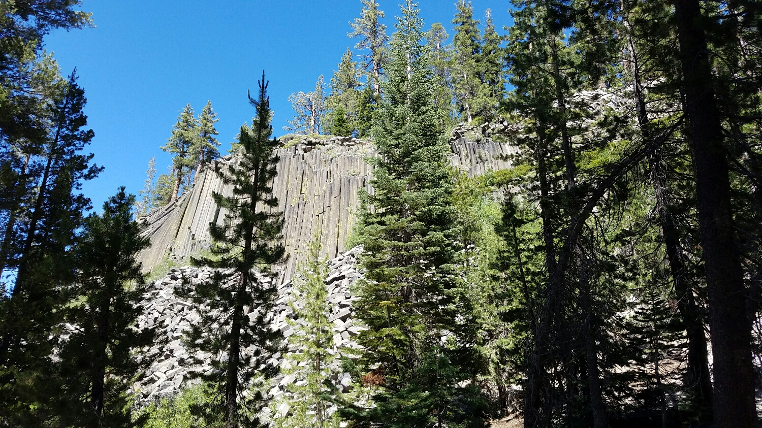 Our first day out from Red's - here's the Devils Postpile