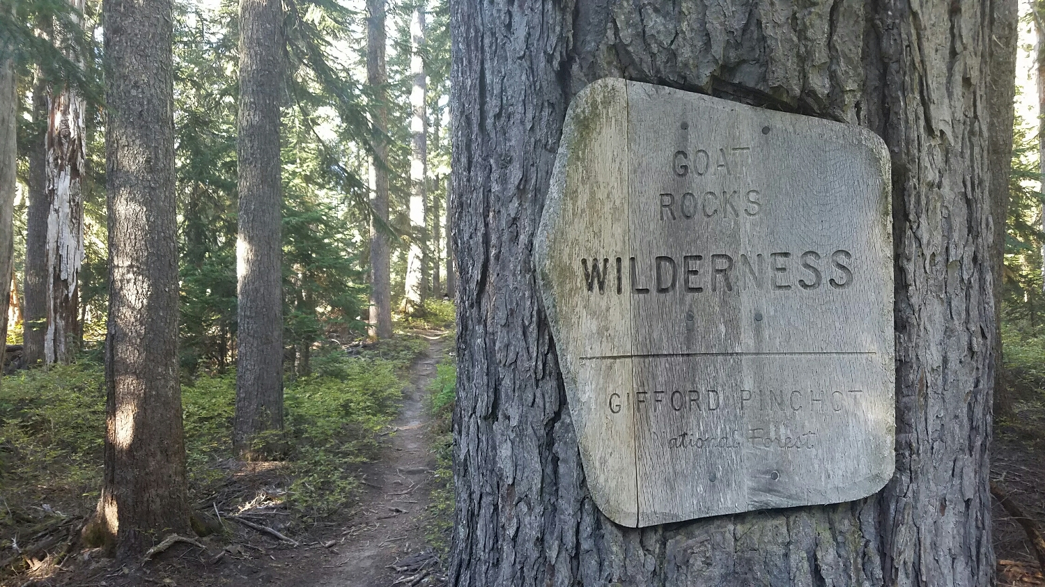 the Goat Rocks wilderness has been one of my favorite places on trail and I was so lucky to be there while there was good weather!