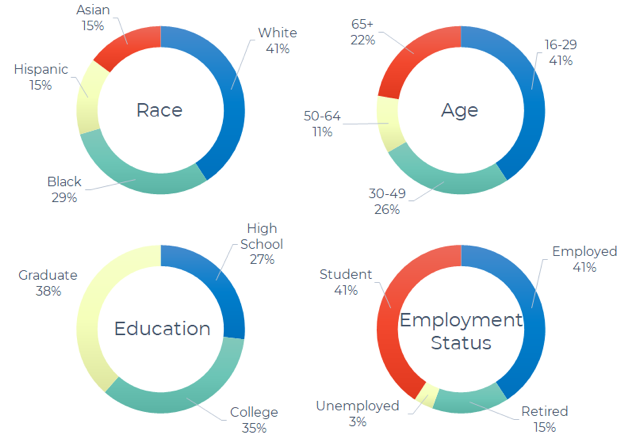 Demographic overview of our interview sample