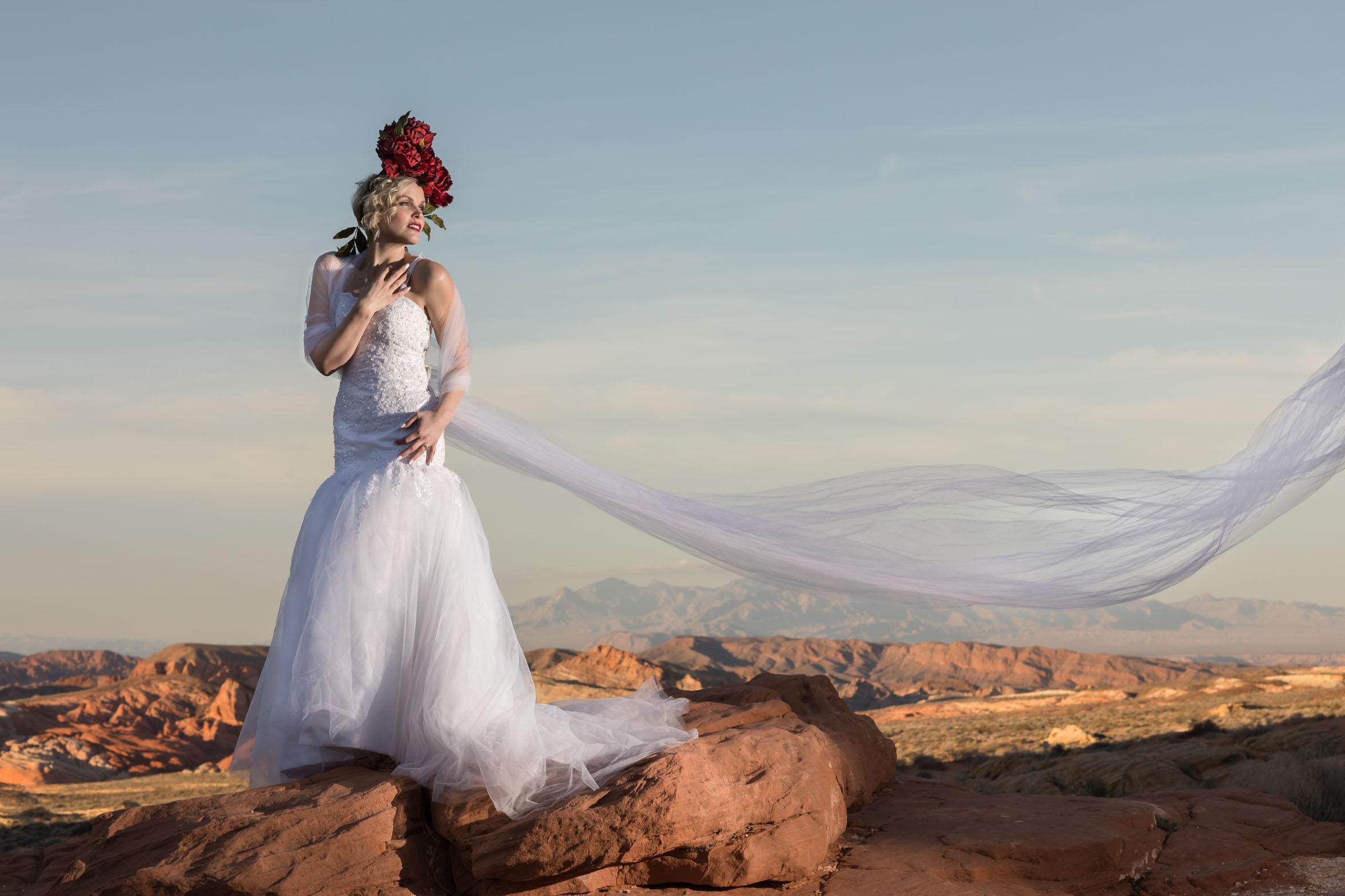 bride-alone.jpg