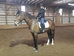 Sandra and her dressage boy, Chevy!