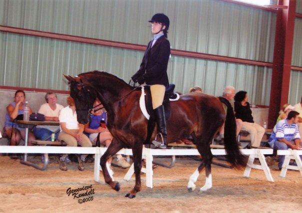 Ontario Horse Show.jpg