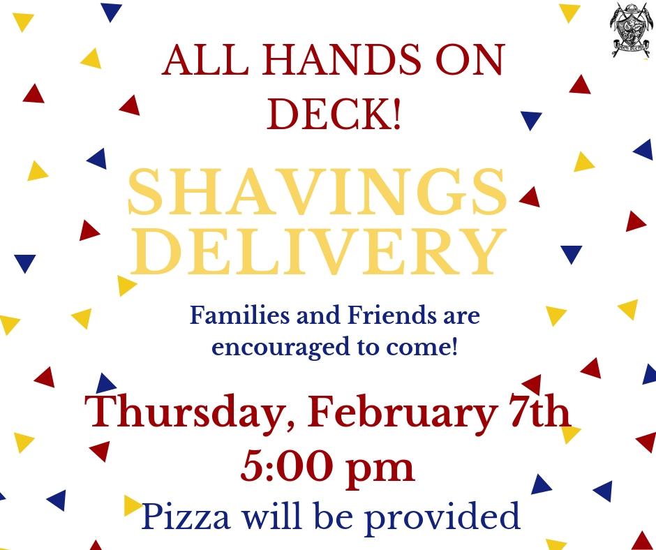 shavings - Feb 2019.jpg