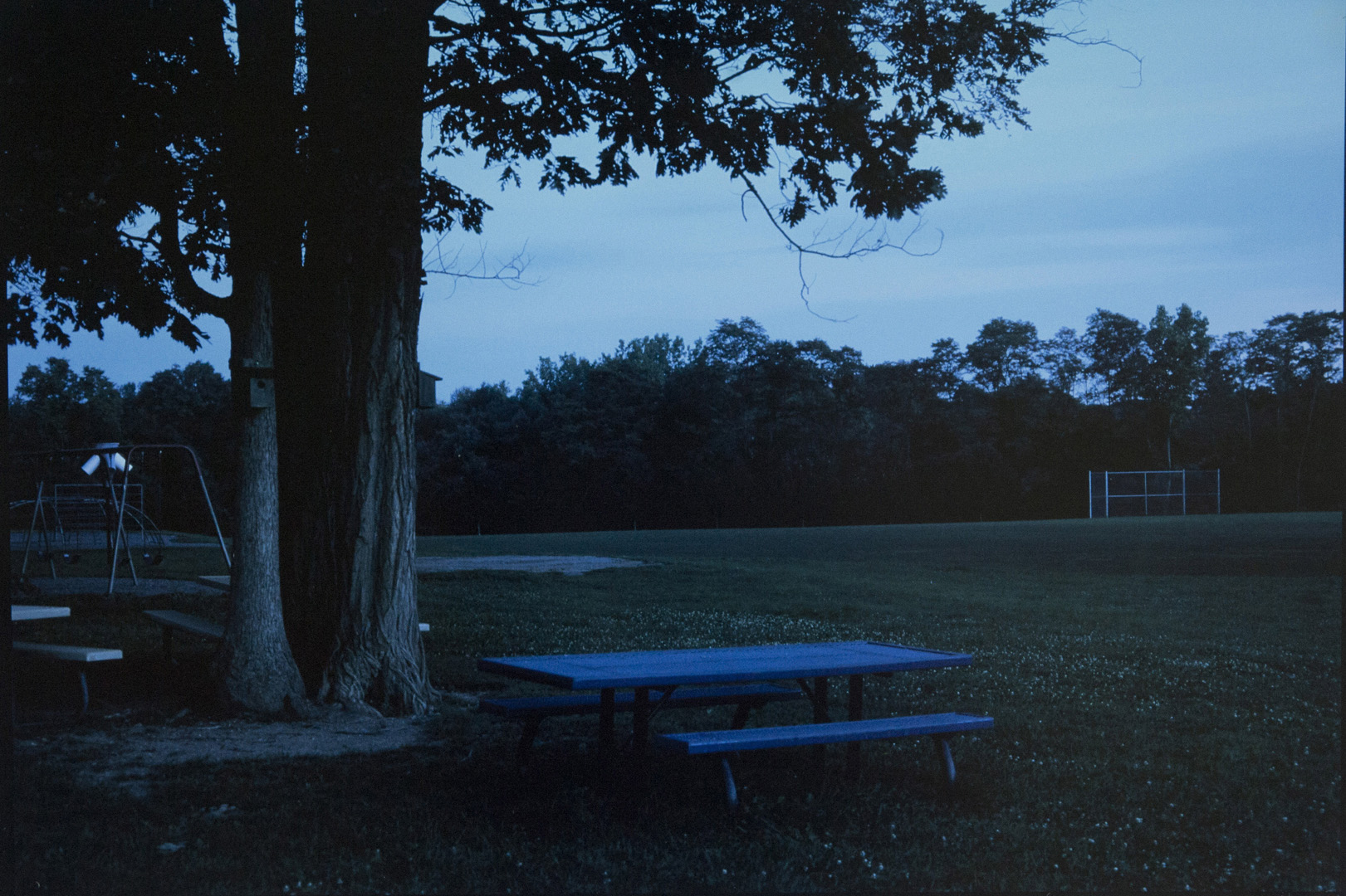 dusk picnic table in park009.jpg