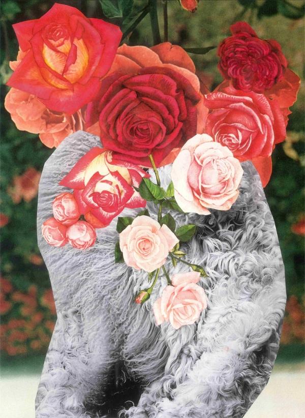 flowers and fur.jpg