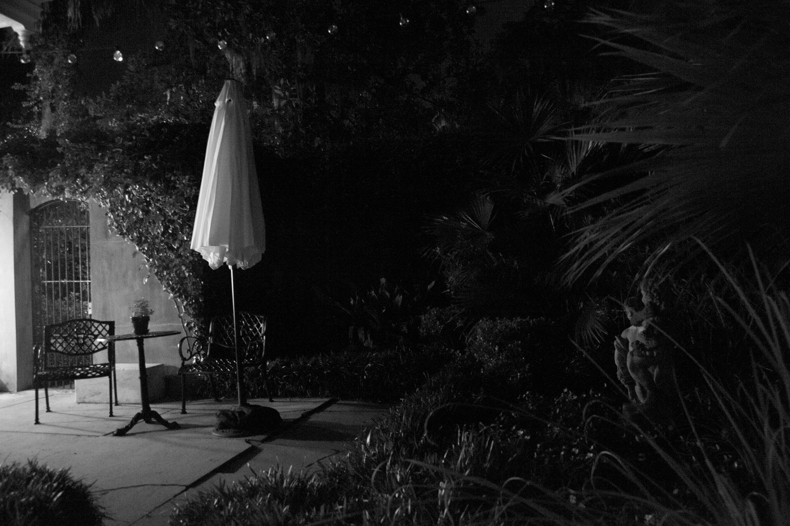 outside with umbrella Savana.jpg