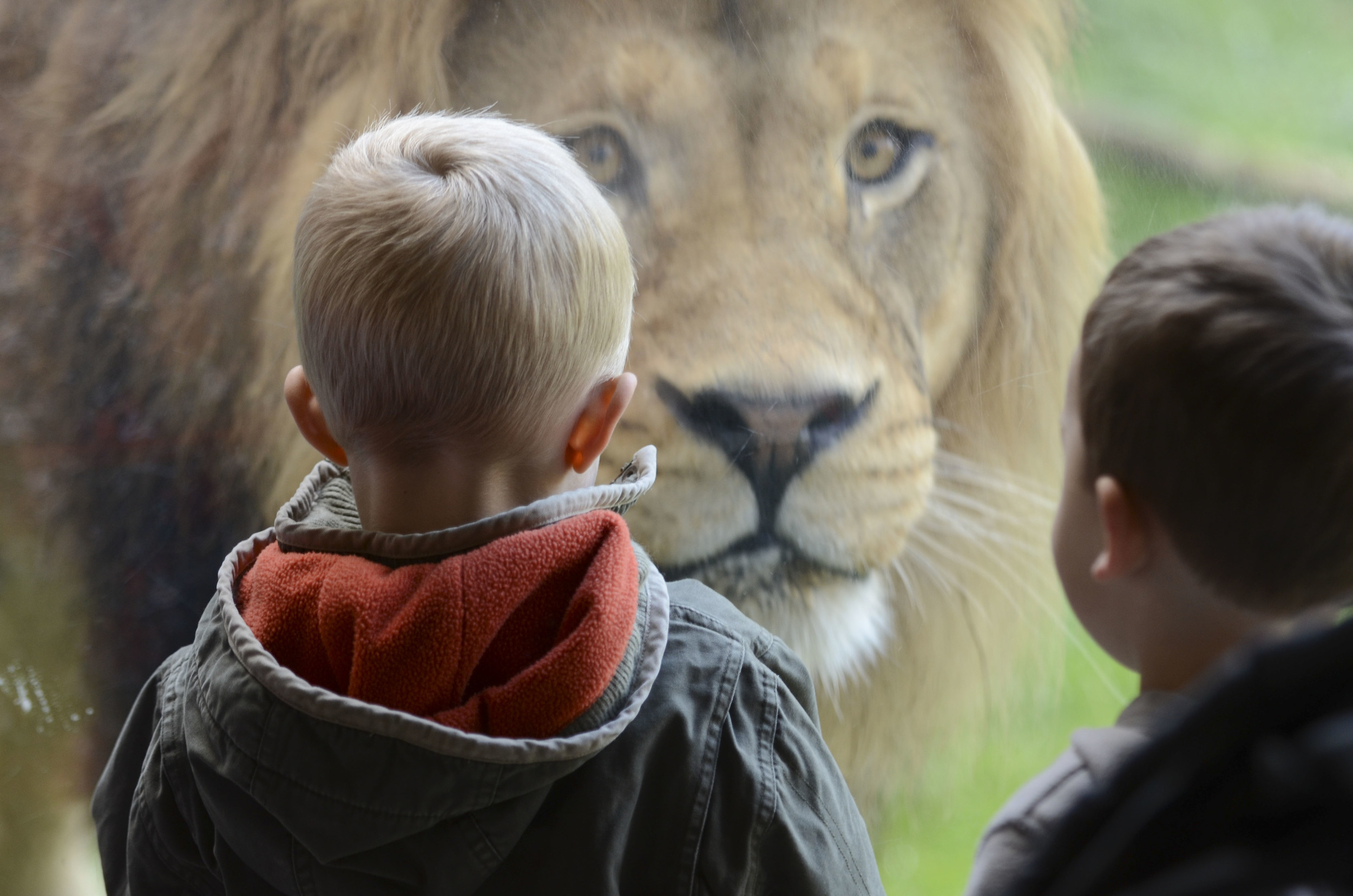 3/Oregon Zoo