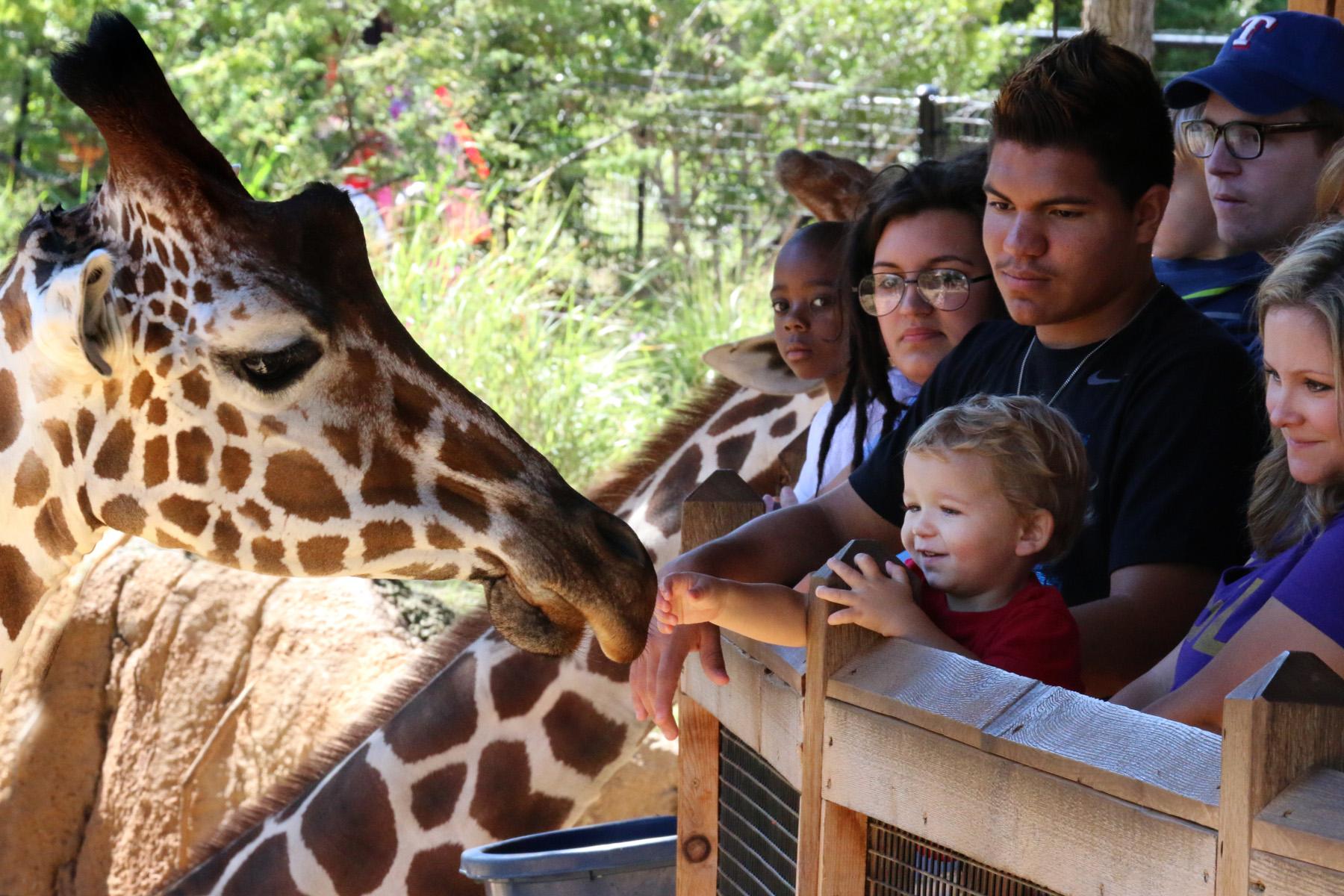4/Dallas Zoo