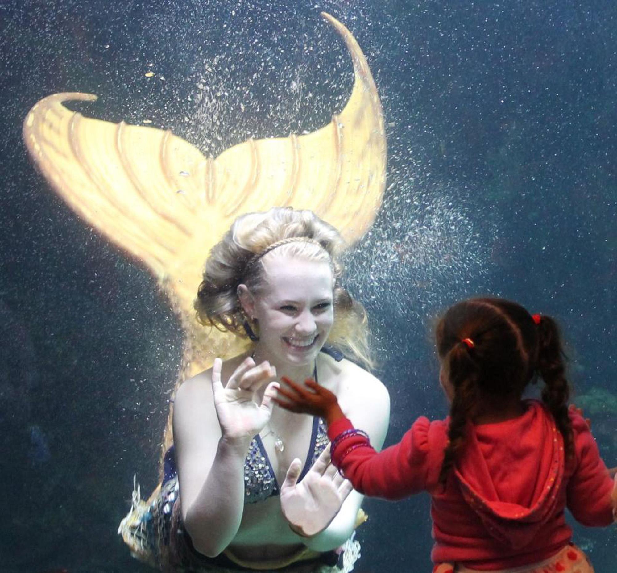 3/Downton Aquarium