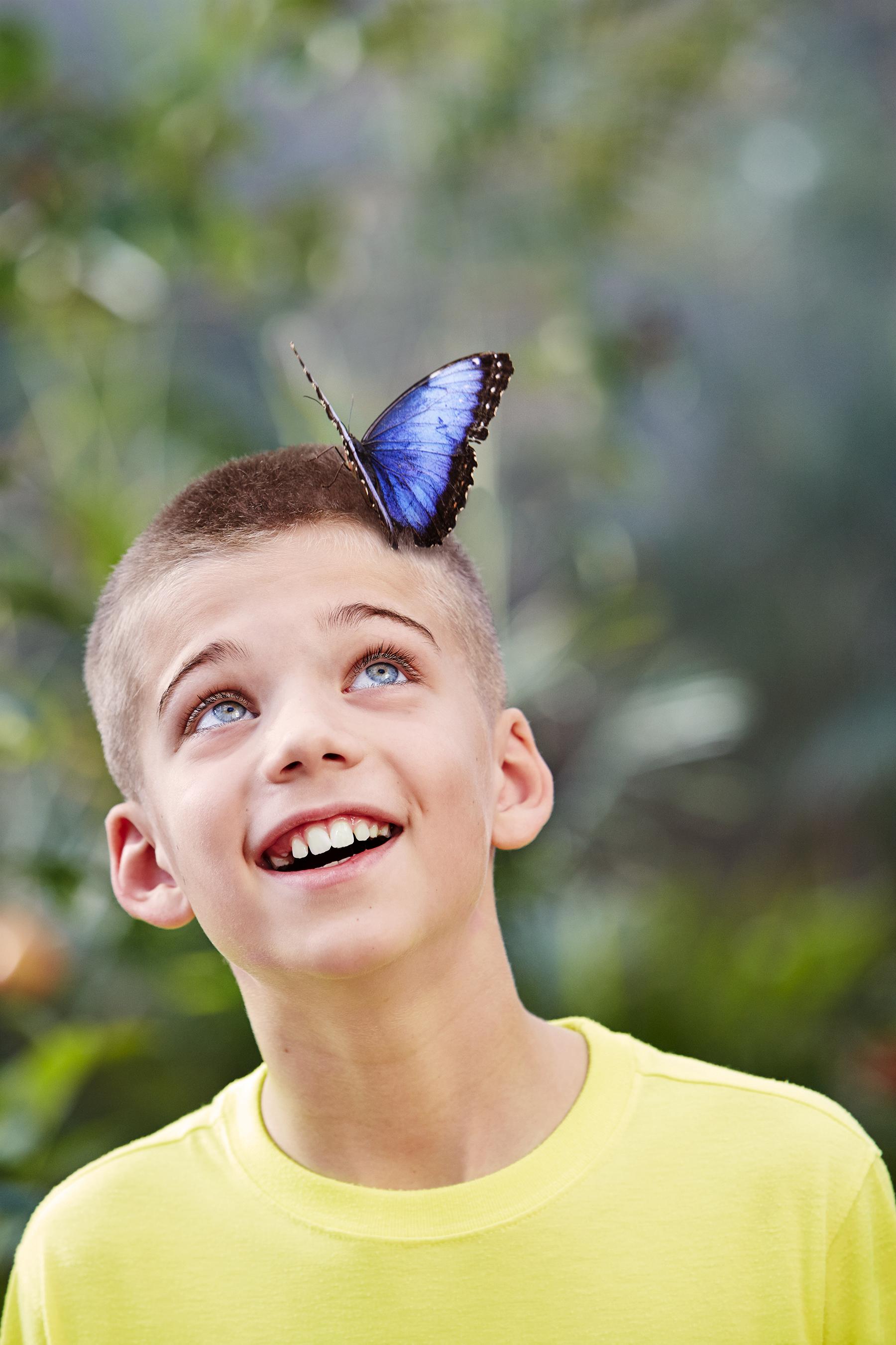 7/Butterfly Wonderland