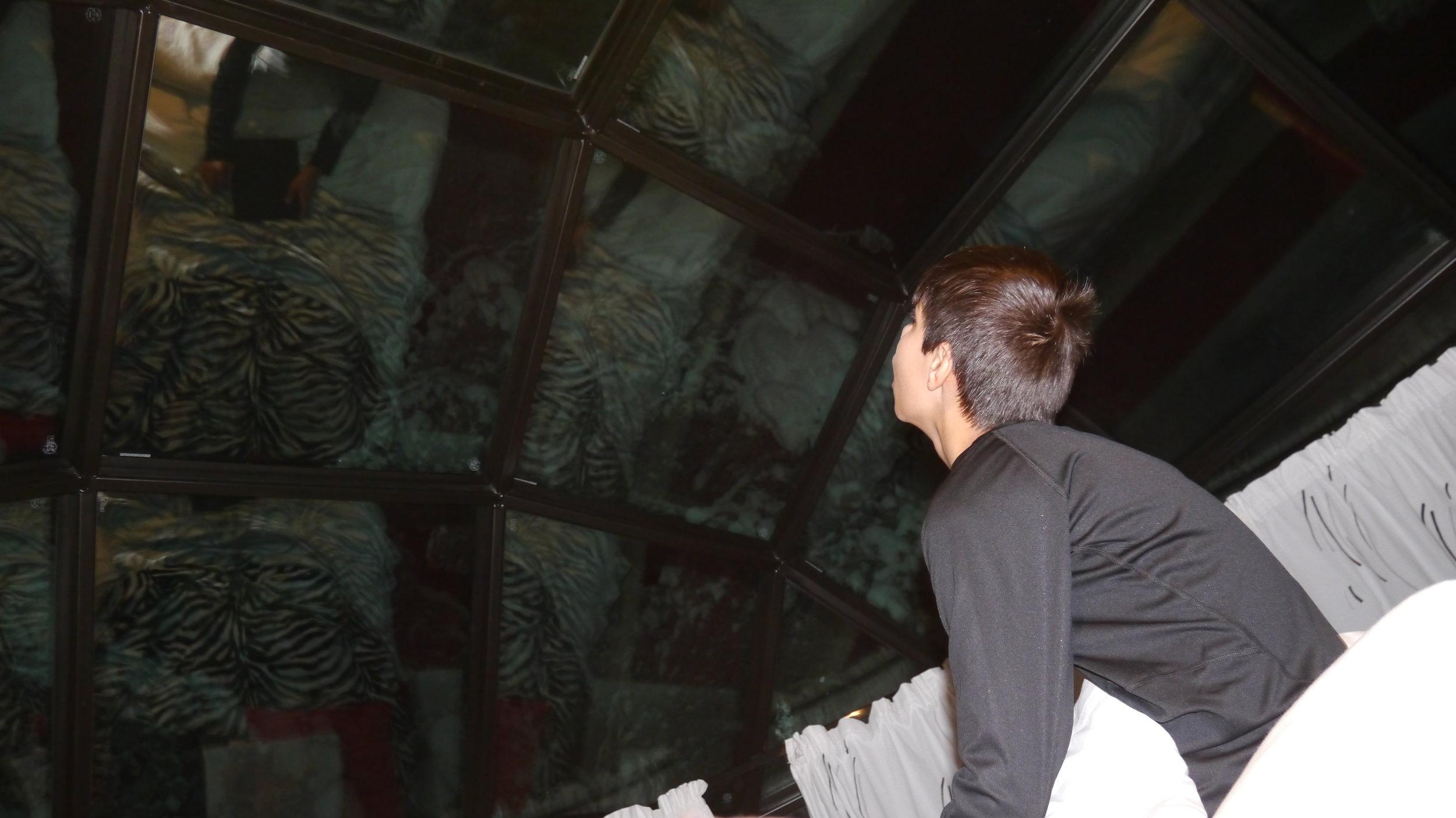 12-24-14 Aidan looks on roof copy.JPG