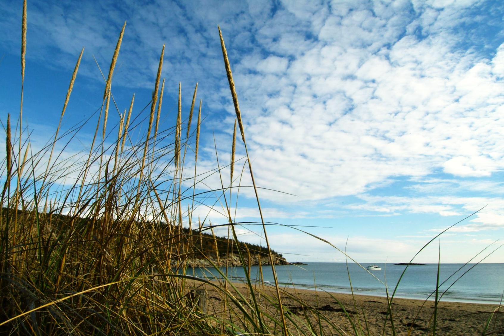 5/Sand Beach
