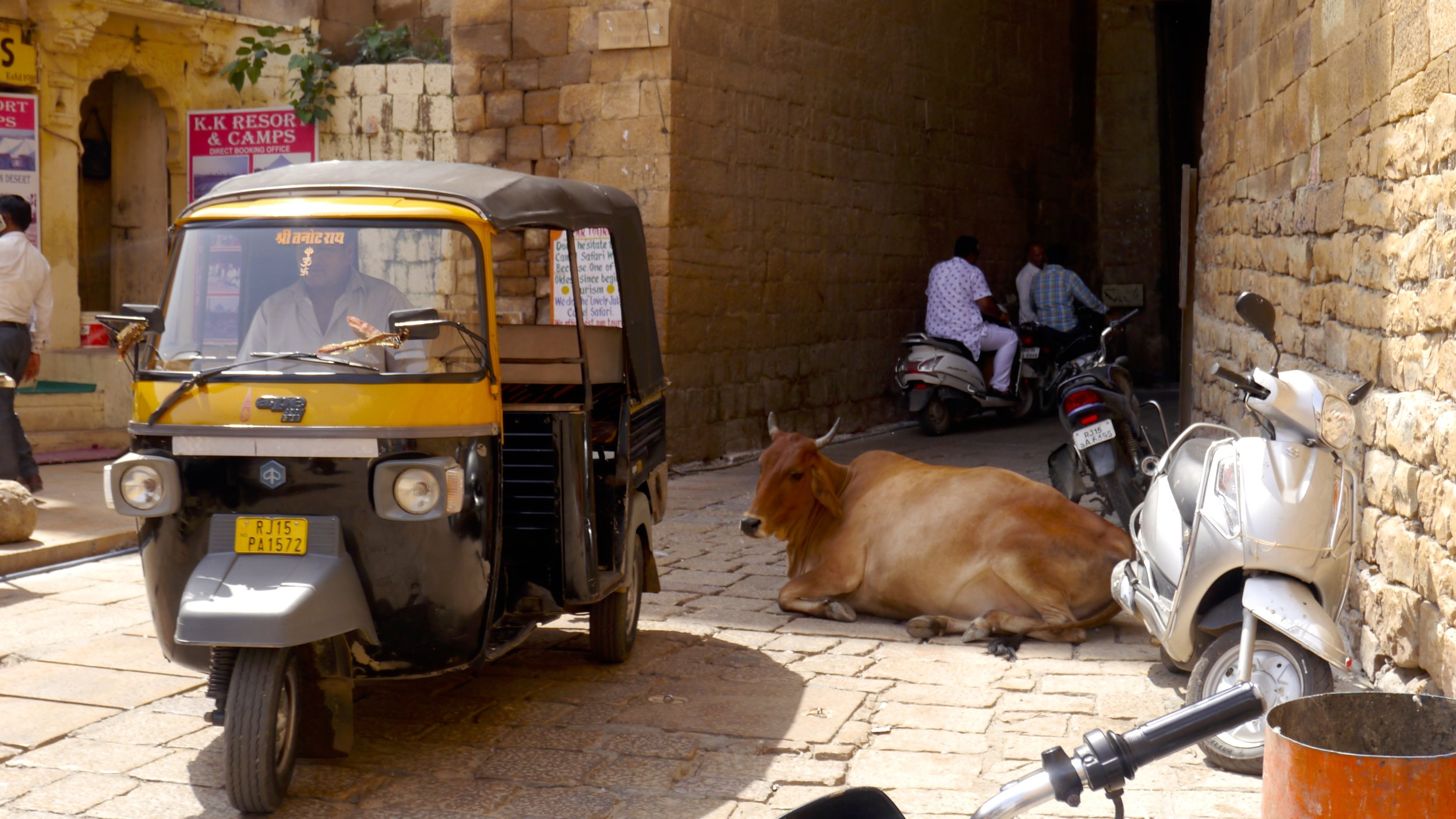 2/Yes, there are cows in the street