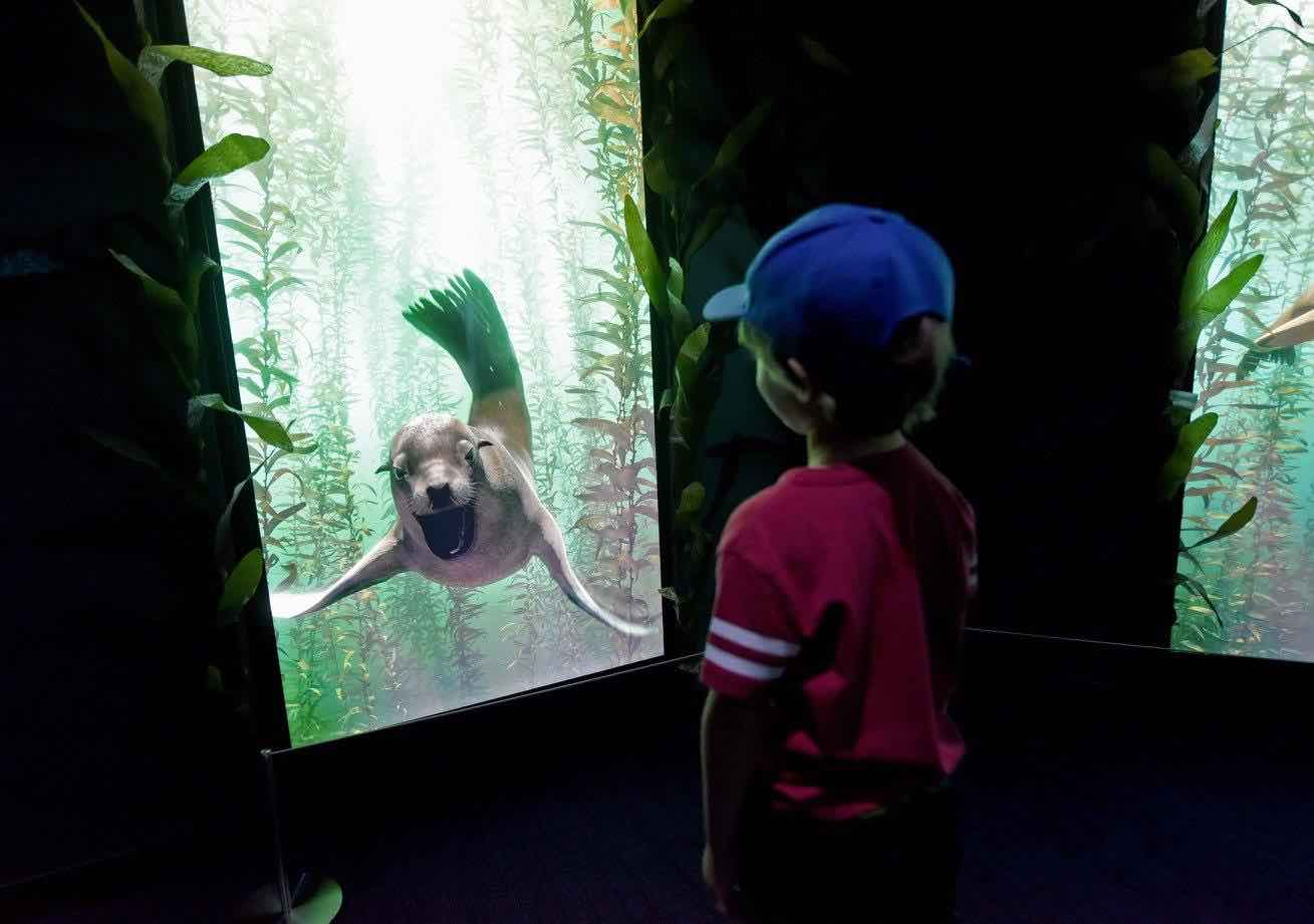 3/National Geographic Encounter: Ocean Odyssey