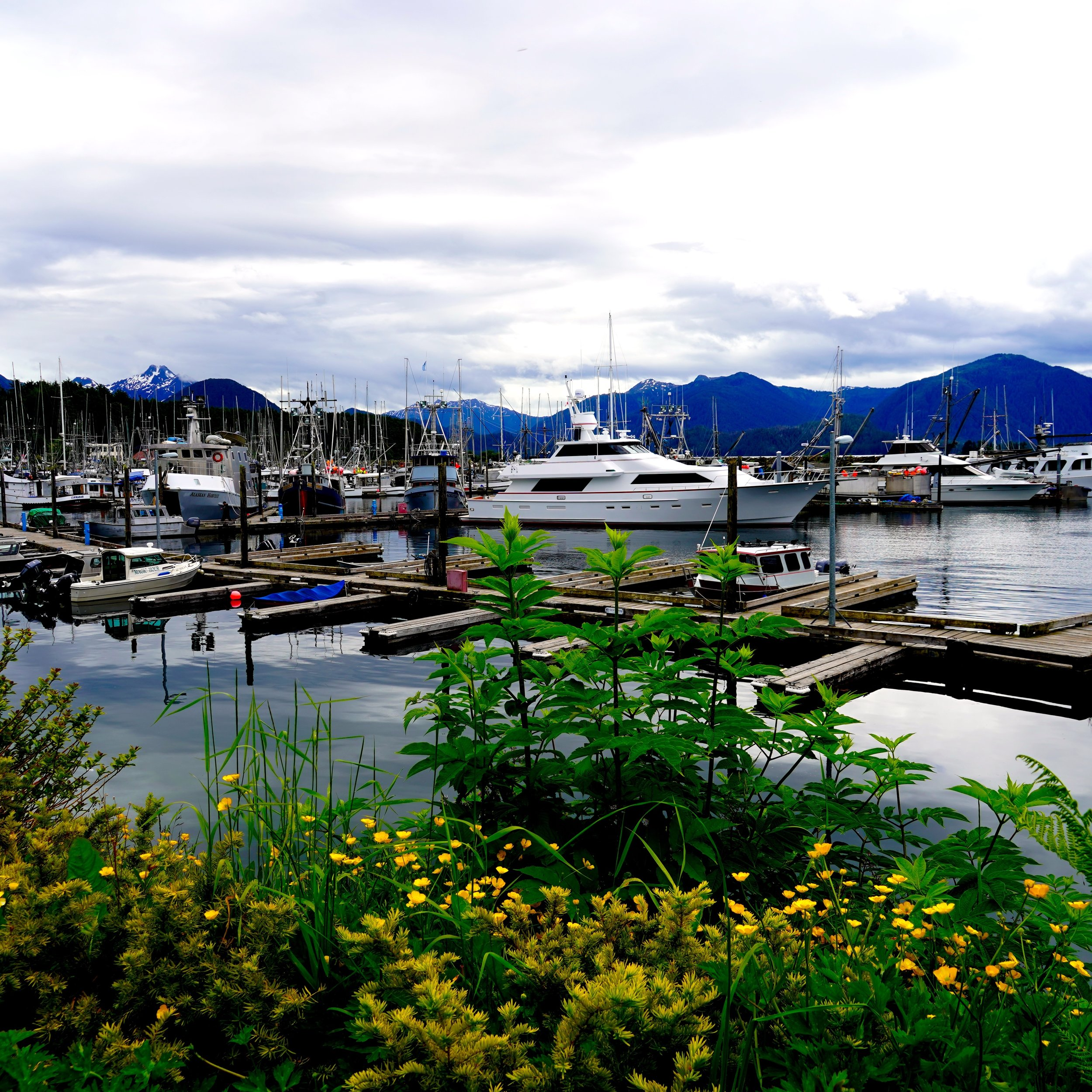 6-24-18 Sitka marina mountains.JPG