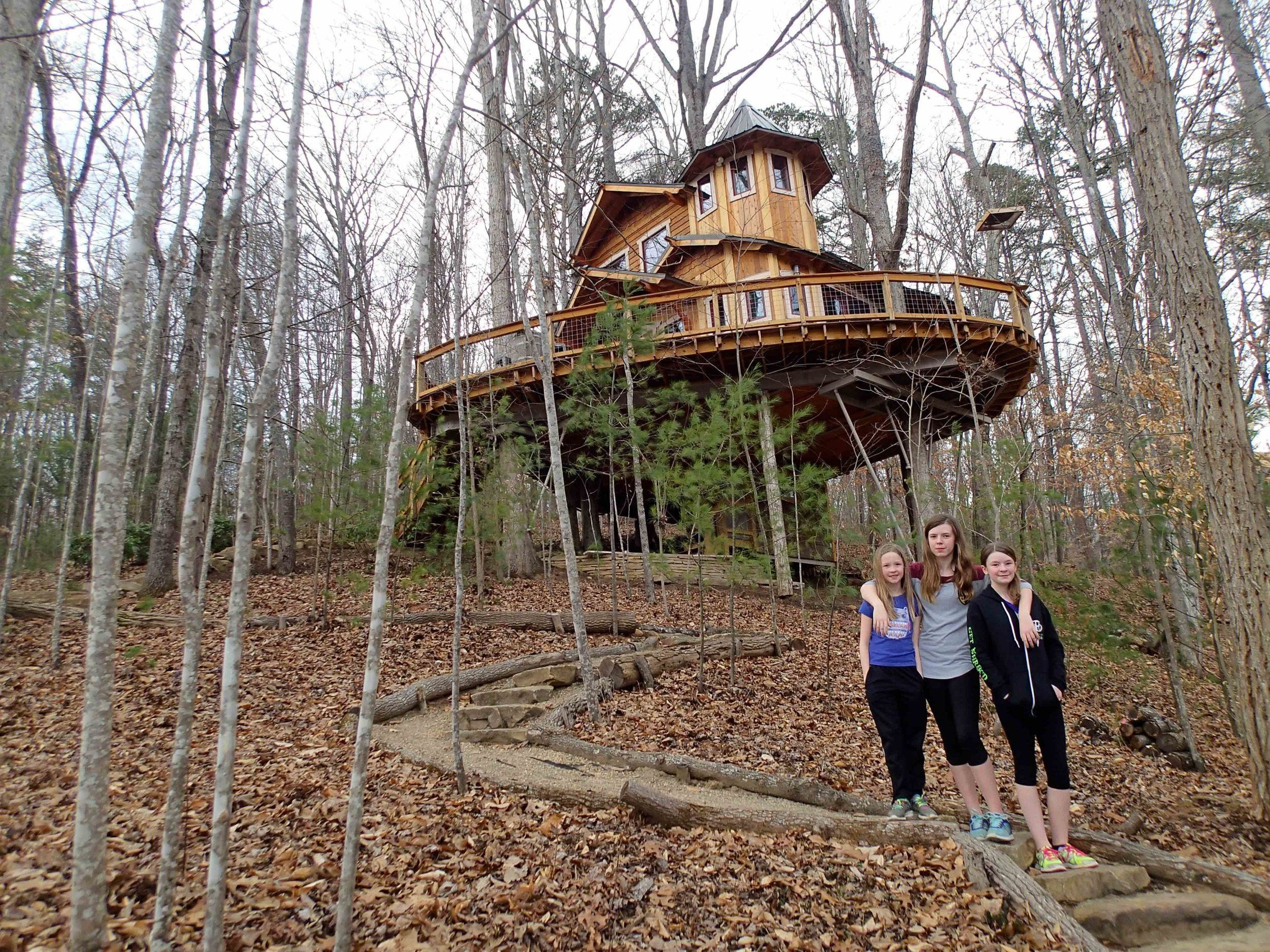 2/Carolina Jewel Treehouse