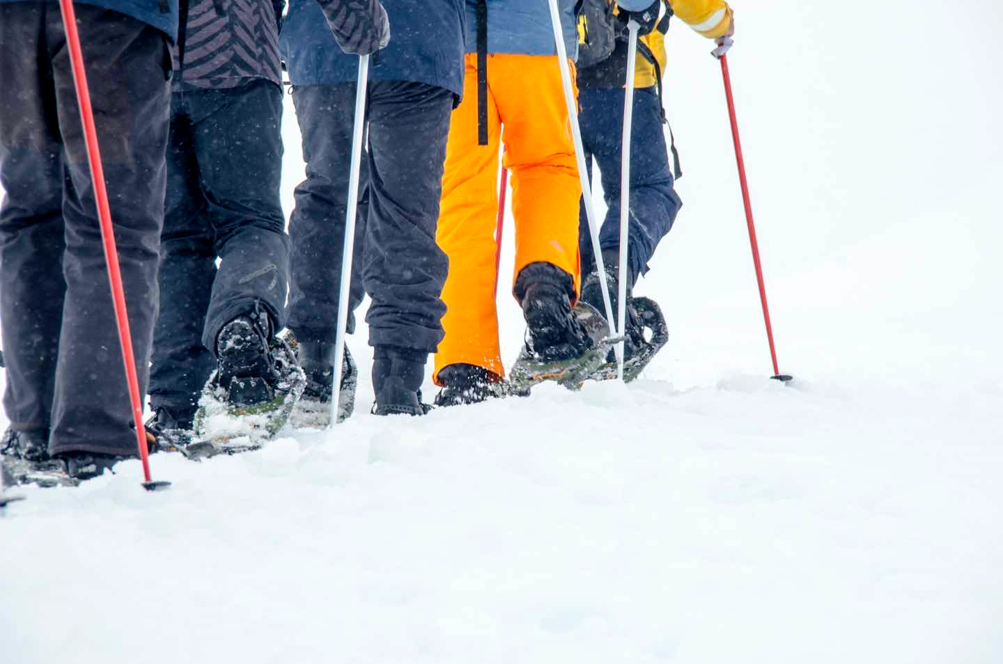 1/Snowshoeing up mountains