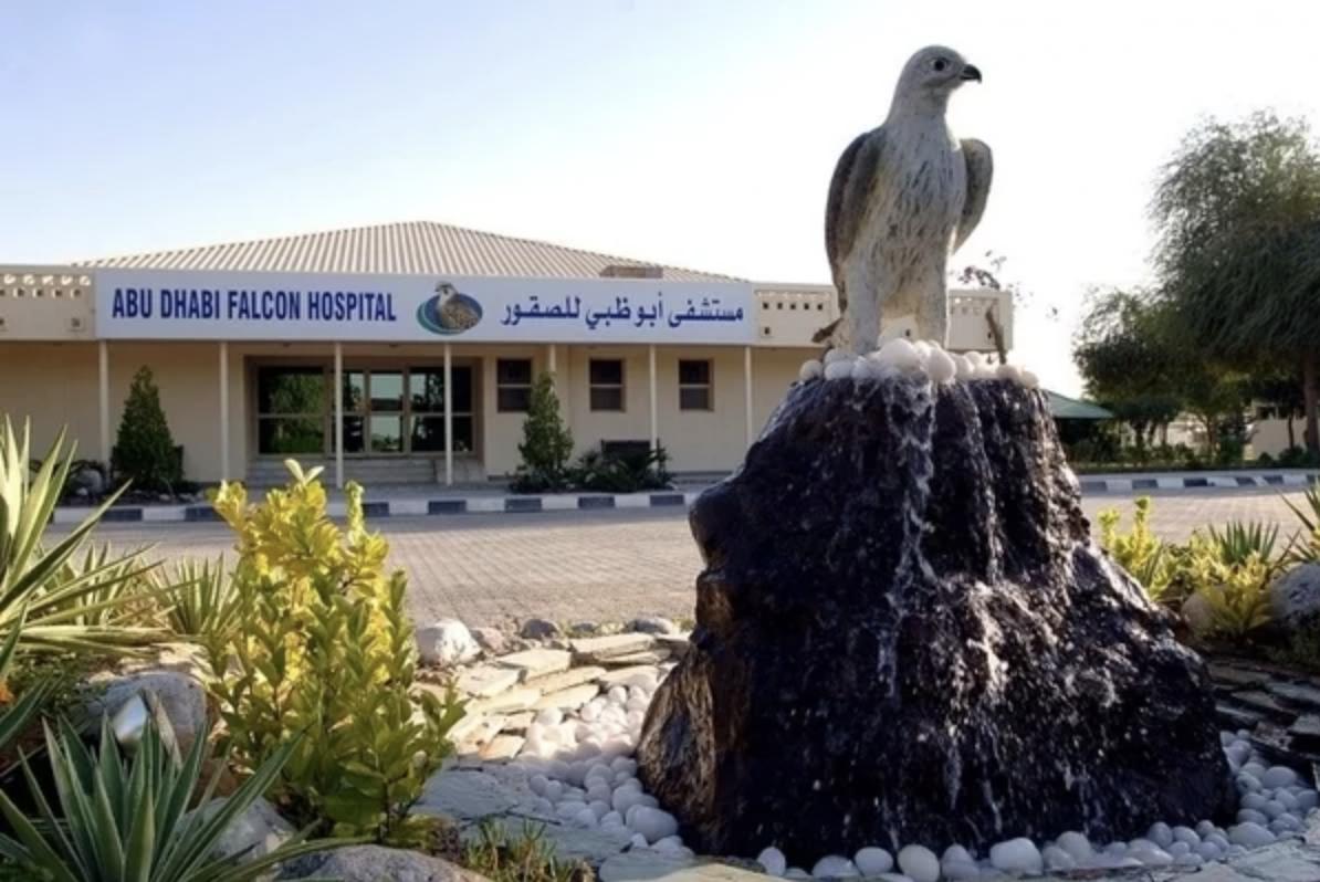 6/Abu Dhabi Falcon Hospital