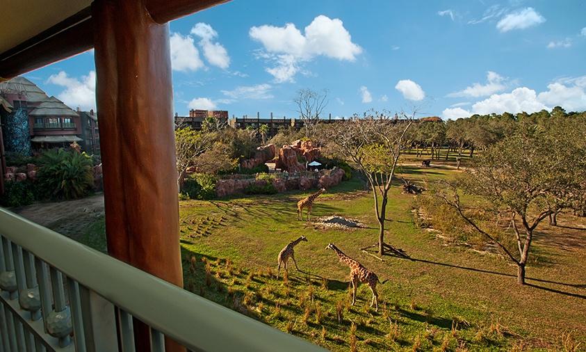 Disney World:Animal Kingdom Lodge.jpg