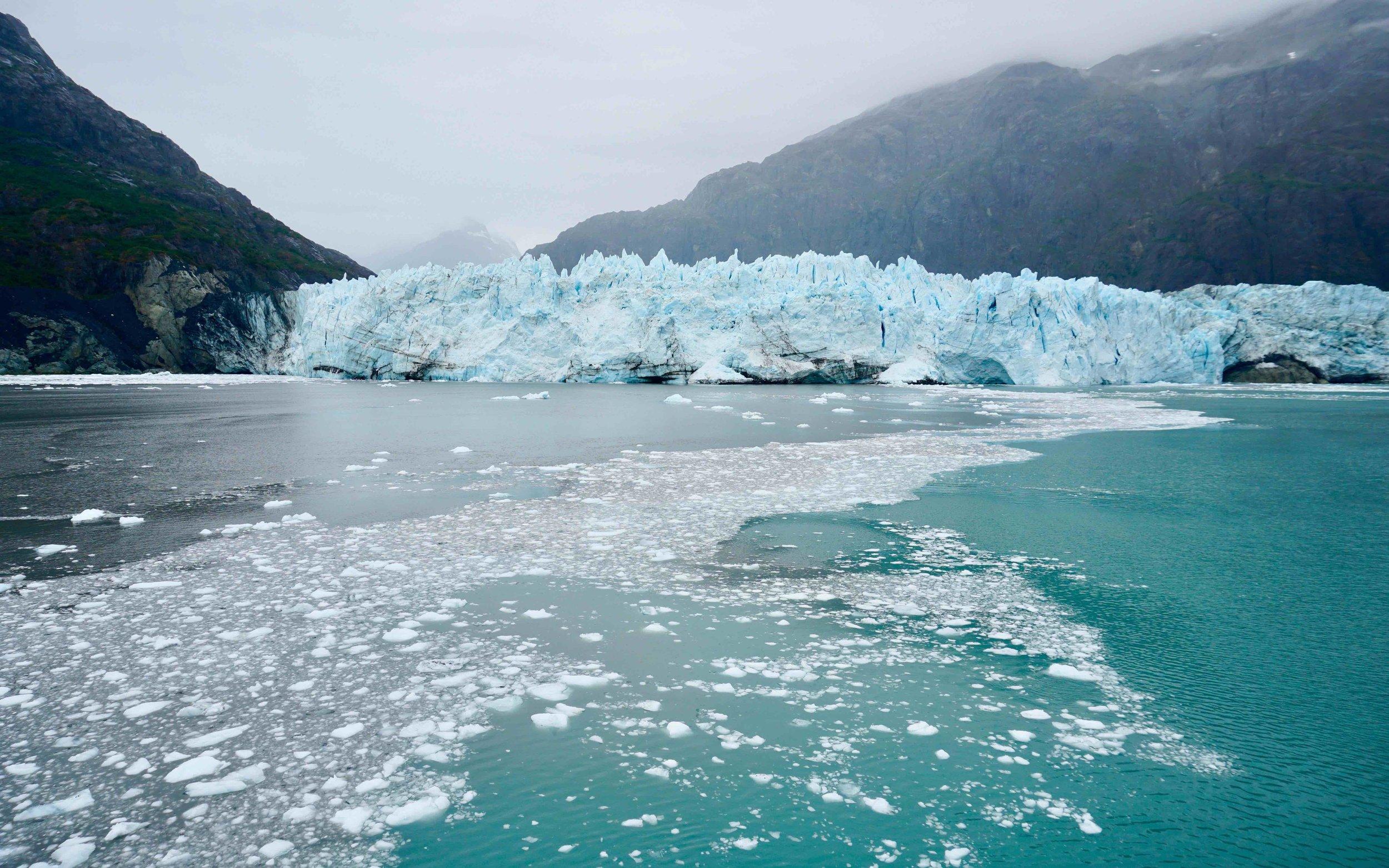 DAY 2: Glacier Bay National Park
