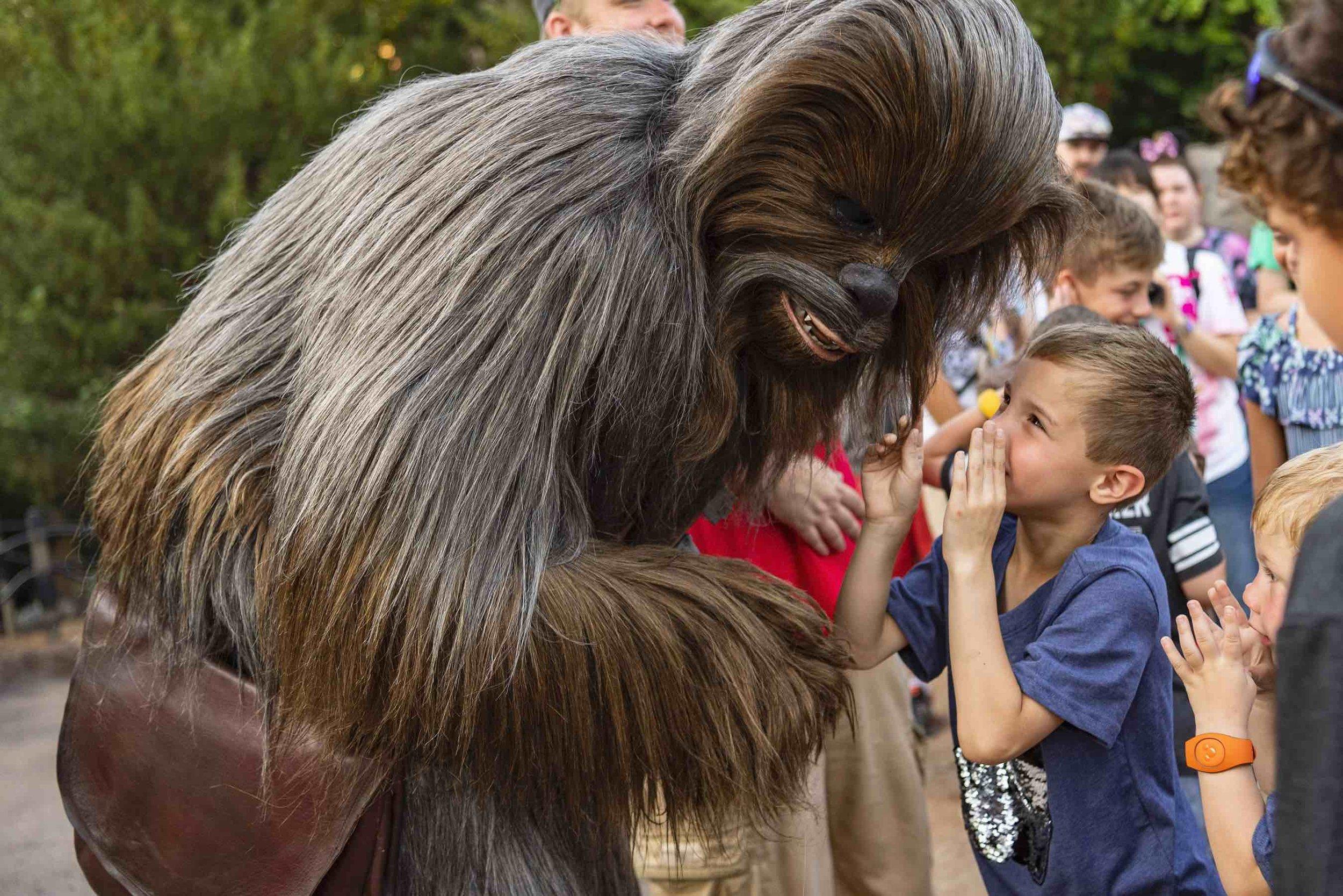 Hero Star Wars Galaxy's Edge Disney World .jpg