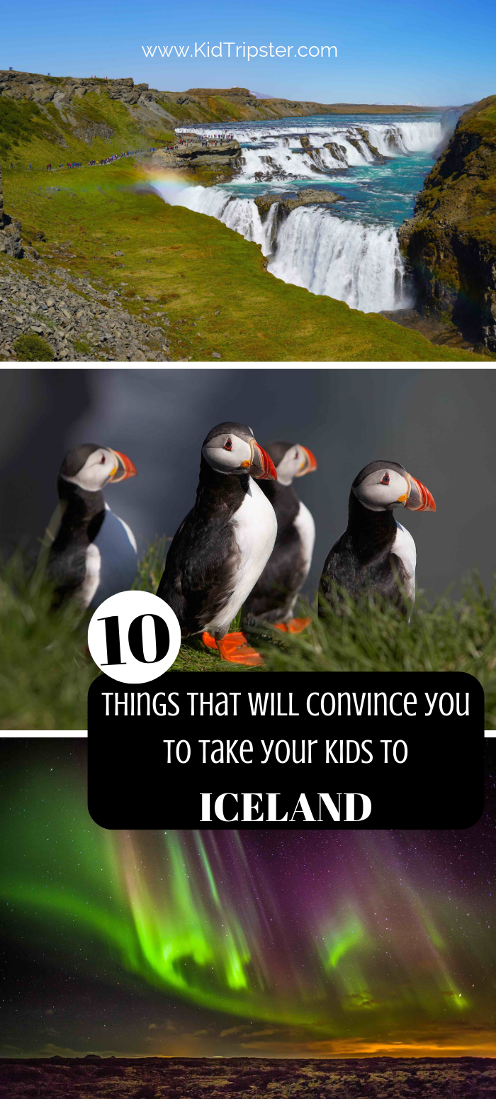 Reasons to take your kids to Iceland