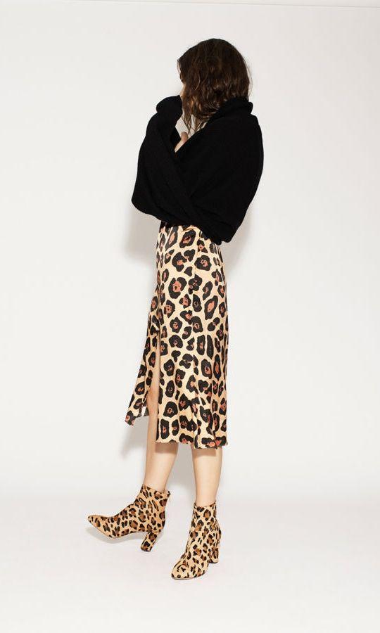 leopard_36.jpg