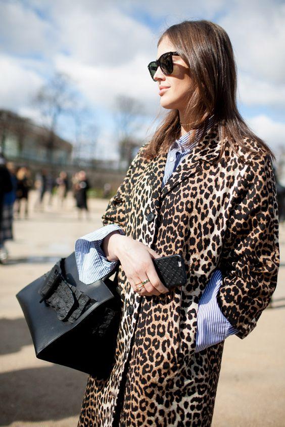 leopard_42.jpg