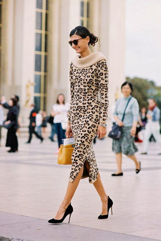leopard_44.jpg