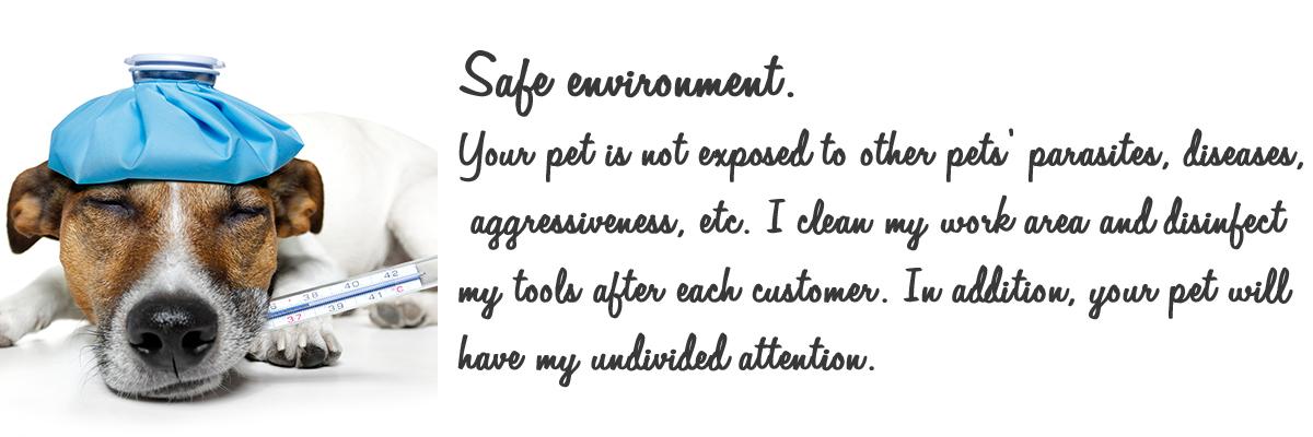 safe environment.jpg