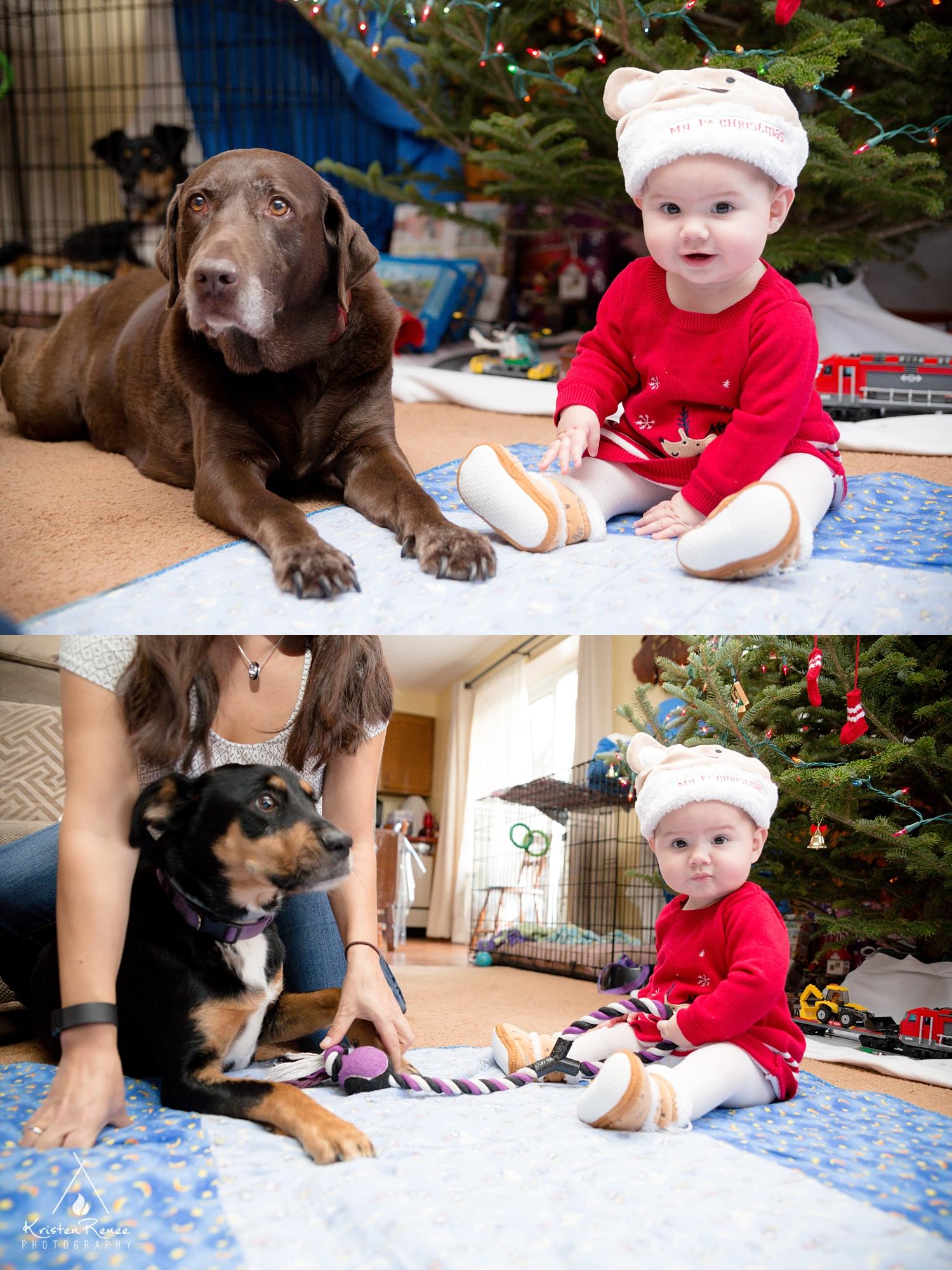 Armstrong Christmas - Kristen Renee Photography_0013.jpg