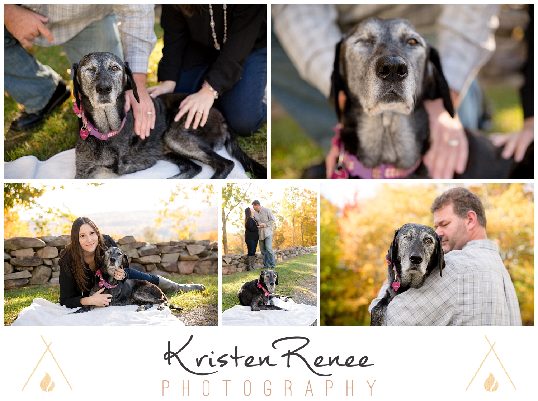 Iris's Goodbye - Dog Portraits